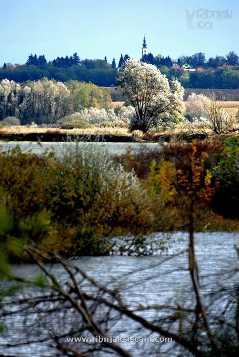 Ribnjak-i-okolis-045.jpg